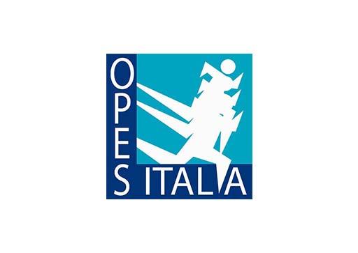 logo opes2